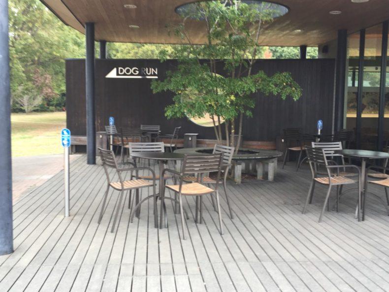三木SA上り スタバのドッグカフェエリア