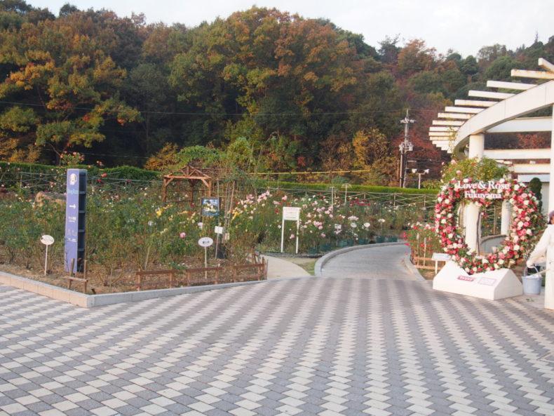 福山SA上り バラ園