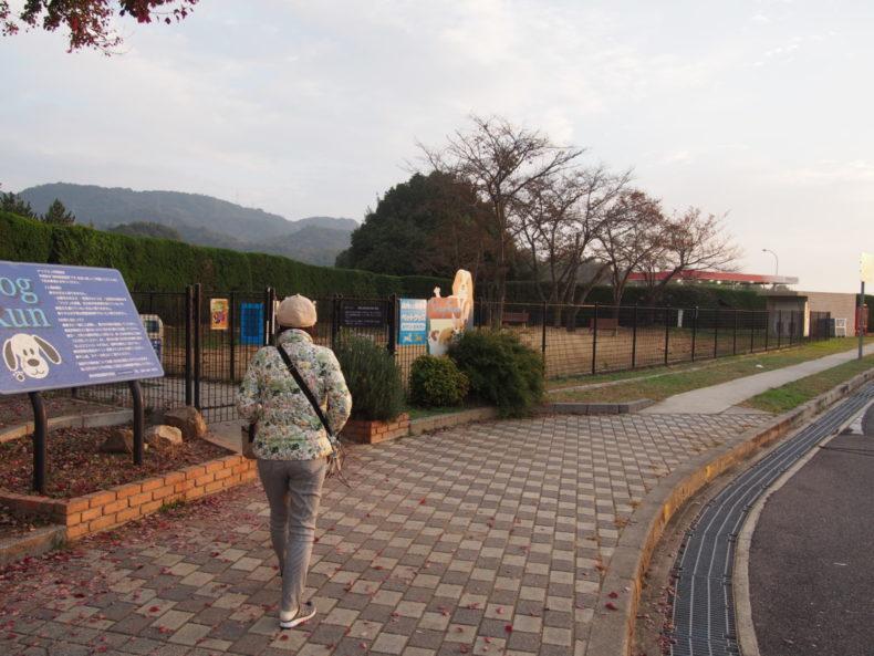 福山SA上り ドッグラン全景