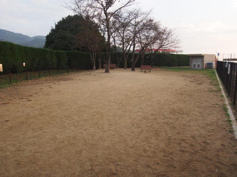 福山SA上り 砂地のドッグラン