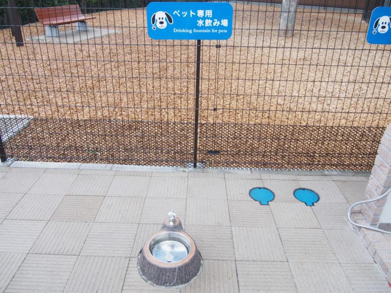 守谷SA下り ペット用水飲み場