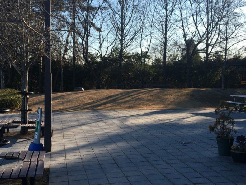 甘楽PA下り 入口側の芝生